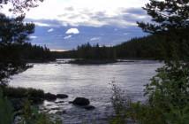 Divoká lososí řeka