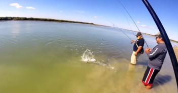 Lov smuhy skvrnité v jižním Texasu